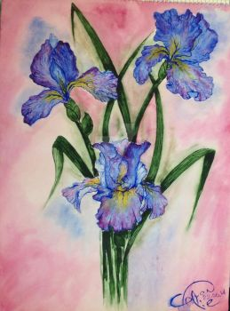 Flowers with water color by Gvenivar-Lie