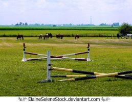OLD - Pasture with Jumps by ElaineSeleneStock