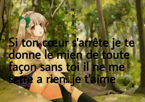 French quote by Ayumi0