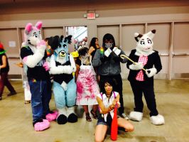 Furries by The-1One