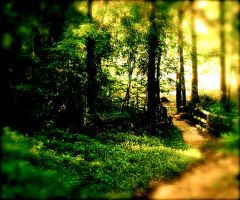my last pathway by nievabee
