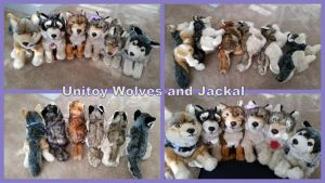 Unitoy Wolves and Jackal by Vesperwolfy87