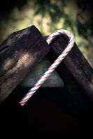candy cane. by cainess