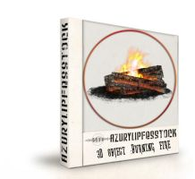 3D object2009-burning fire by AzurylipfesStock
