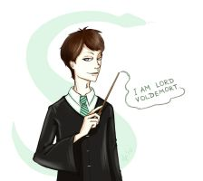 I am Lord Voldemort. by dual-personality