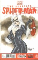 blackcat sketchcover commission by Sajad126