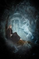 lady and the unicorn by greenfeed