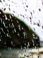 Rain Against My Window Pane by MaeveHumphreys