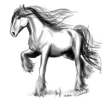 'Midnight' - quick horse sketch 3 by camaro1