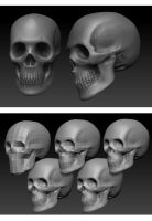 skull sculpt by Kruku