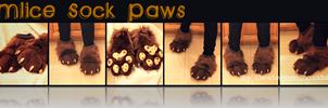 Mlice Sock Paws - CMSH by DexterousZombie