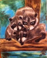 Baby Raccoons by wolfangel281
