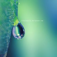 dripdrop by illusionality