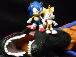 Sonic and Tails 1, Dr. Eggmans creatures 0 by forever-at-peace