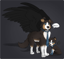 Castiel canine reference by phillipant
