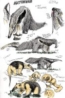 anteaters by ExitStageLeft