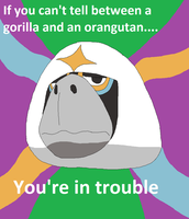 Quick Pic: Oranguru and the Memes