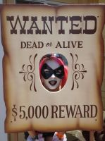 Wanted by KaylaKakashi