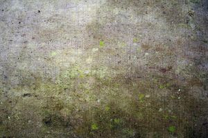 Mossy Cloth 02 by goodiebagstock