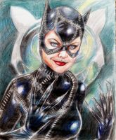 Catwoman by shaunriaz