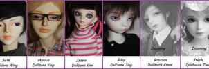 Dolly ID by MLS-photography