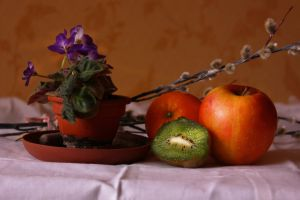 first still life by docase