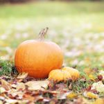Pumpkins by cloduy