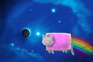 burned out nyan cat by williamcjones48