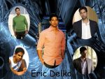 CSI Miami: Eric Delko by Jessyn814