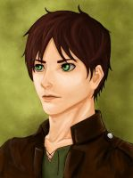 SnK - Eren by Almerious