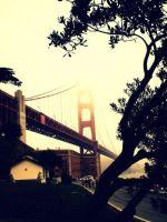 Sanfransisco by Kylie-maree