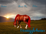 Contest Entry ~ t-swizzle4ever by Marshfeilds-stock