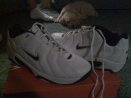 My new Nike shoes :D by McCloudJedi202