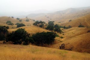 Ahmanson Ranch Morning by Vividlight