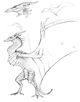 Rodan Sketch by brianboyster