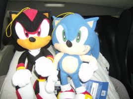 Sonic and Shadow plushies by yami200