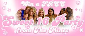 Sweet Sixteen Banner ad by toadking07