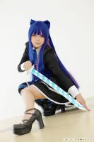Anarchy Stocking - Slice you up by NioTan