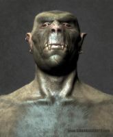 Orc by Simon Buckroyd by Binoched