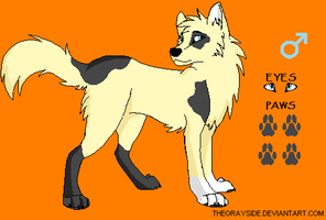 Desert Wolf Adopt 4 by BlackWolf1112-ADOPTS