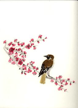Sparrow on a branch by fivesix