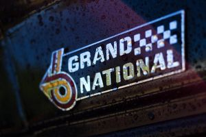 Grand National Wet by Doogle510