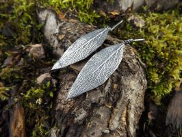 Salvia apiana, White Sage Fine Silver Earrings by QuintessentialArts