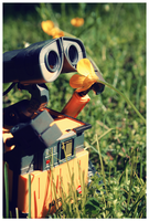Wall-E by morphinetears36