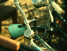bicycle 1 by kitleen