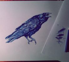 Crow. by SurrOllie