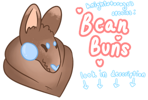 [ SPECIES POST ] Bean Buns ! by knightstorage