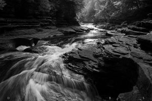 Depths of Presque Isle by leavenotrase