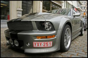 Ford Mustang Eleanor KS by C0LL1