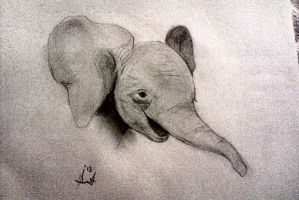 Elephant Calf by PrimaryD